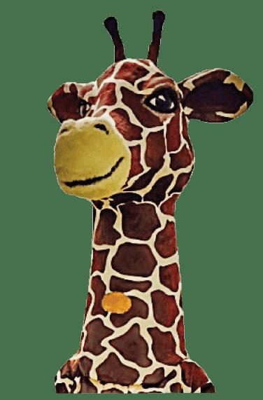 giraffen kalmar öppettider